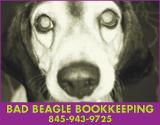BadBeagleBookkeeping