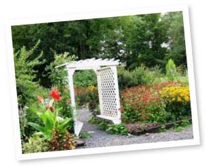 rvba_garden_6-01