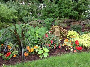 rvba-garden-tour-garden