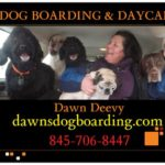 Dawn's Dog Boarding